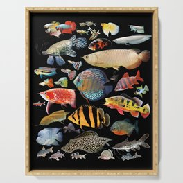 Freshwater tropical fish Serving Tray