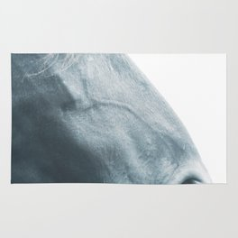 Horse head - fine art print n° 2, nature love, animal lovers, wall decoration, interior design, home Rug