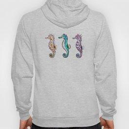We Three Seahorses Hoody