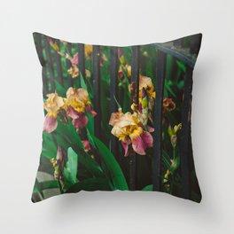 Brooklyn Blooms Throw Pillow