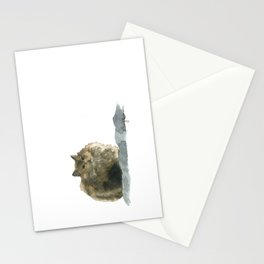 Cat on the rocks Stationery Cards