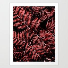 Burgundy Bracken Art Print