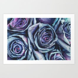 Macro photography of purple - neon roses with raindrops. Fantasy and magic concept. Selective focus. Art Print