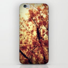 Burst Into Light iPhone Skin