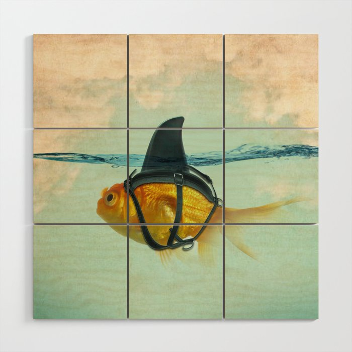 Brilliant DISGUISE - Goldfish with a Shark Fin Wood Wall Art
