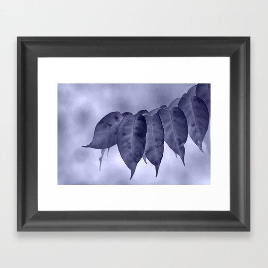 The curtain #2 Framed Art Print