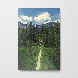 Pathway To The Rockies Metal Print