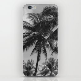 Palm Trees Black and White Photography iPhone Skin