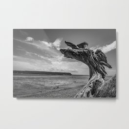 Whidbey Island Driftwood Metal Print