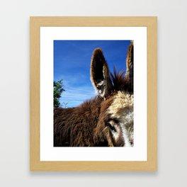Elliot the Burro Framed Art Print