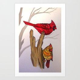 The Cardinals  Art Print