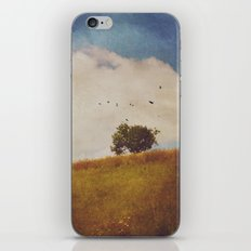 A Beautiful Afternoon iPhone & iPod Skin