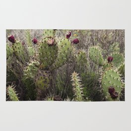 Moody Prickly Pear Rug