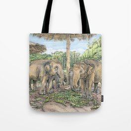 Rescued in Thailand Tote Bag