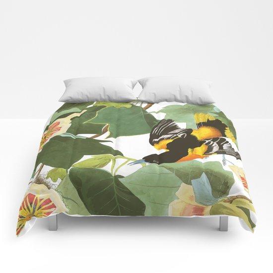 Icterus icterus Nature Comforters