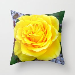 Golden Yellow Rose with Garden Background Throw Pillow