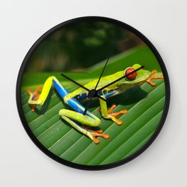 Green Tree Frog Red-Eyed Wall Clock