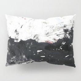 Scratching the surface Pillow Sham