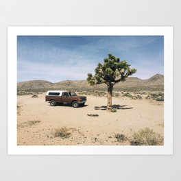 Joshua Tree in Death Valley  Art Print