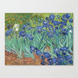 Irises - Vincent Van Gogh Canvas Print