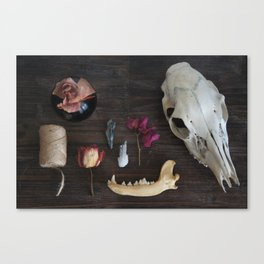 Specimen Assmbly 001 // Flowers, Minerals, Bone & Twine Canvas Print