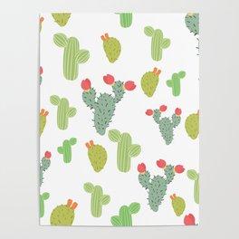 Succulent succulents. Poster