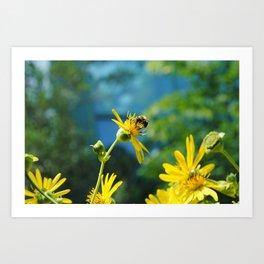Bees on a Flower Art Print