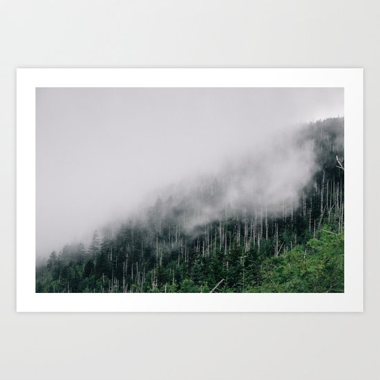 Misty Great Smoky National Park  Art Print