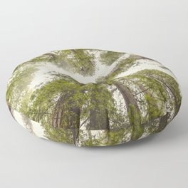Into the Mist - Nature Photography Floor Pillow