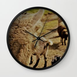 Point of View Wall Clock
