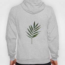Plant Leaves Hoody