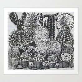 Cactus and Succulents Art Print