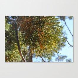 Treesplosion Canvas Print