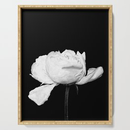White Peony Black Background Serving Tray