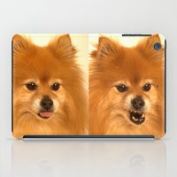 pomeranian iPad Cases featuring Angry Pomeranian dog by Bruce Stanfield