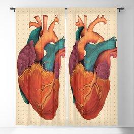 Anatomical Human Heart - Textbook Color Blackout Curtain