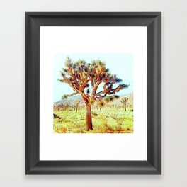 Joshua Tree VG Hills by CREYES Framed Art Print