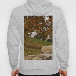 Autumn, Kansas City Hoody