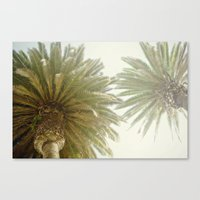palm trees Canvas Prints featuring Palm Trees by The ShutterbugEye