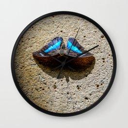 Blue Morpho Butterfly by Teresa Thompson Wall Clock