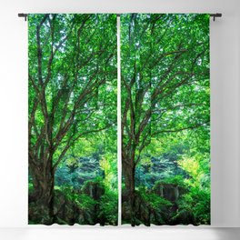 The Greenest Tree Blackout Curtain