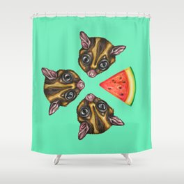 Sugarglider & Melons Shower Curtain