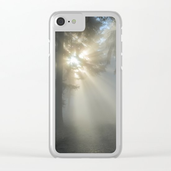 winter sun Clear iPhone Case