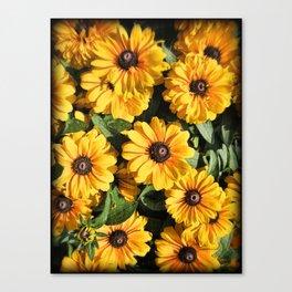 Abundance ~ Yellow Coneflowers / Black-eyed Susans against a Textured Background ~ Vintage Photo Canvas Print