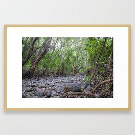 river lava rock Framed Art Print