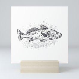 Redfish drawing realistic redfish gifts Mini Art Print
