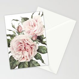 Pink Garden Roses Watercolor Stationery Cards