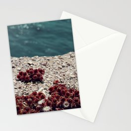 Red and Teal Stationery Cards
