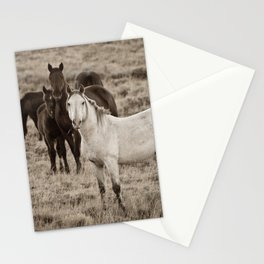 Cautious Stationery Cards