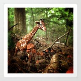 Appalachian Wonderland No. 1 Art Print